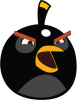 Angry Birds Black 002
